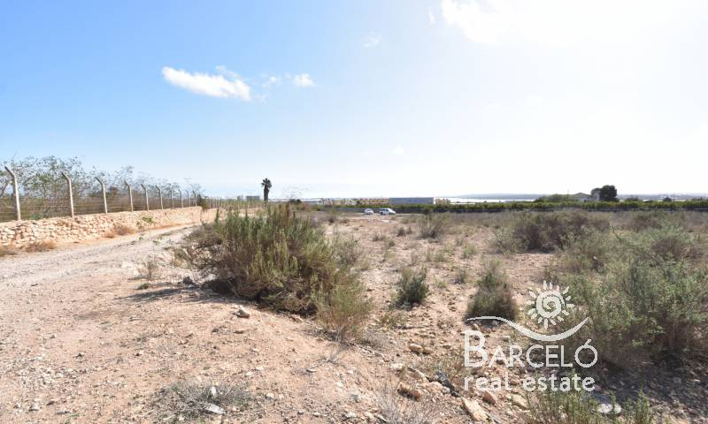 Plot  - Investments - Rojales - Rojales
