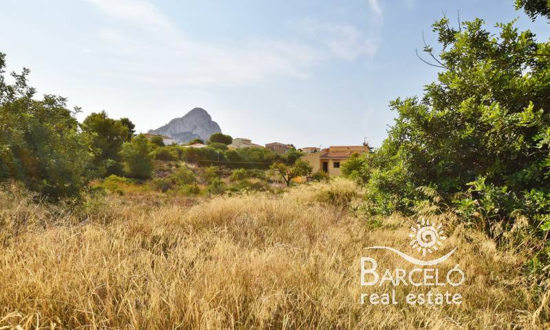 Plot  - Resale - Calpe - Calpe