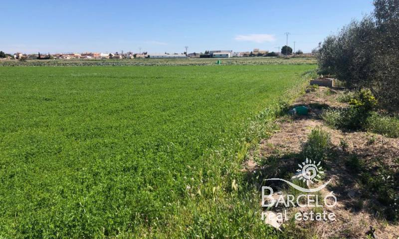 Plot  - Resale - Dolores - Dolores