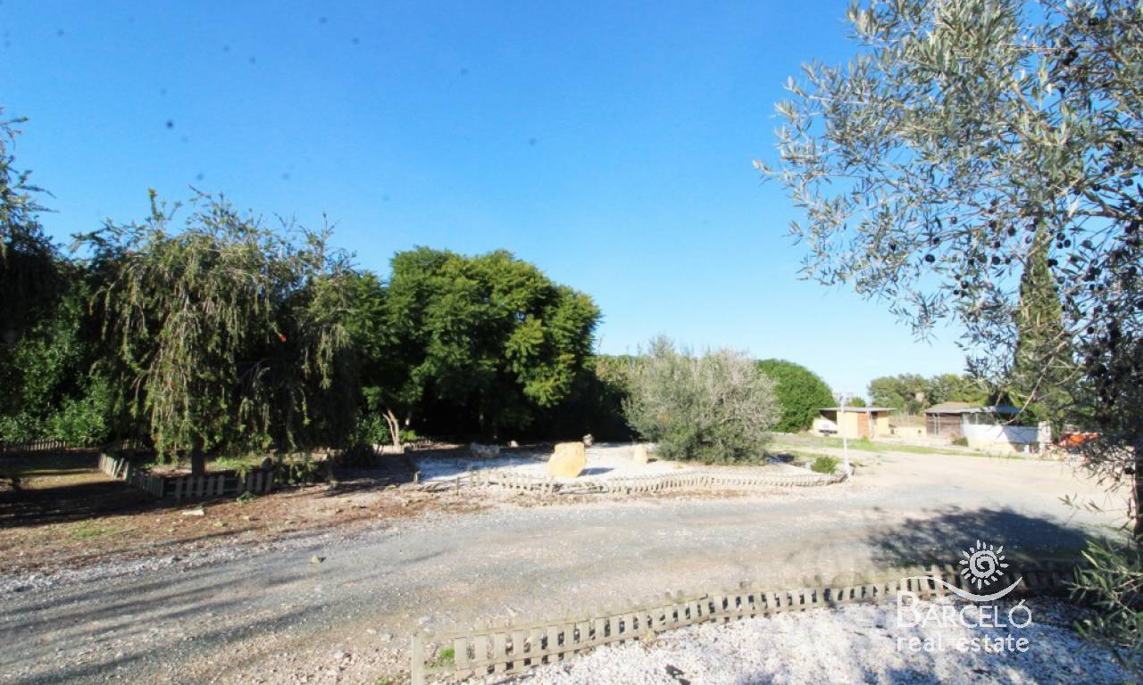 Resale - Country Property - Almoradi - Campo