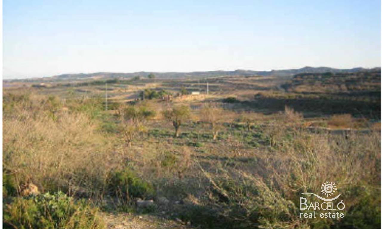 Investments - Plot  - Torremendo