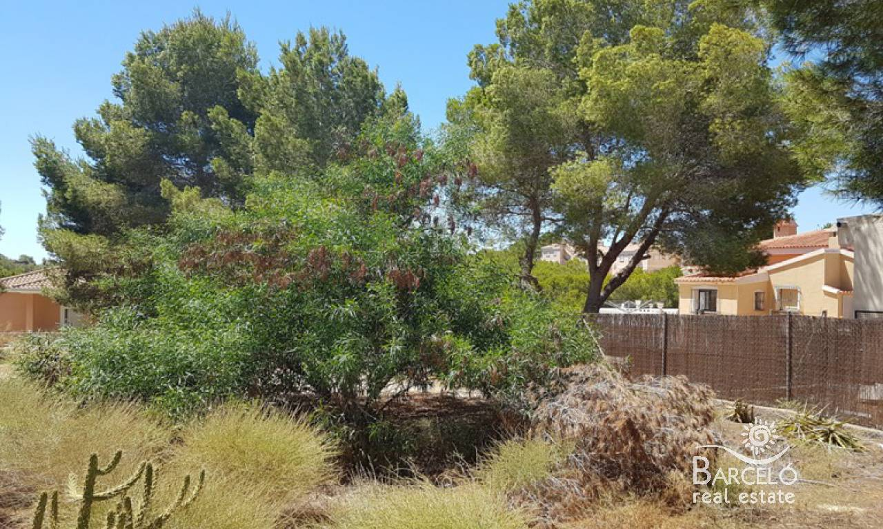 Resale - Plot  - Algorfa - Montemar